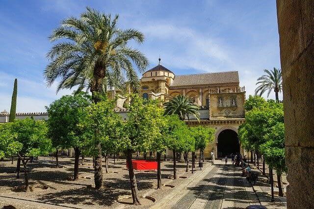 patio naranjos mezquita cordoba